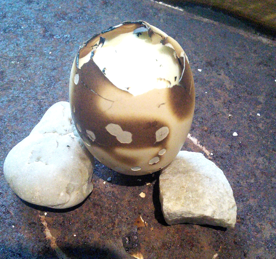Egg a la blowtorch